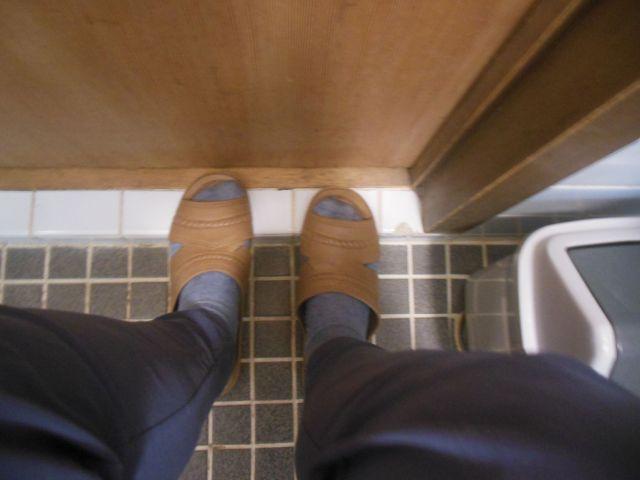 toiletshoes